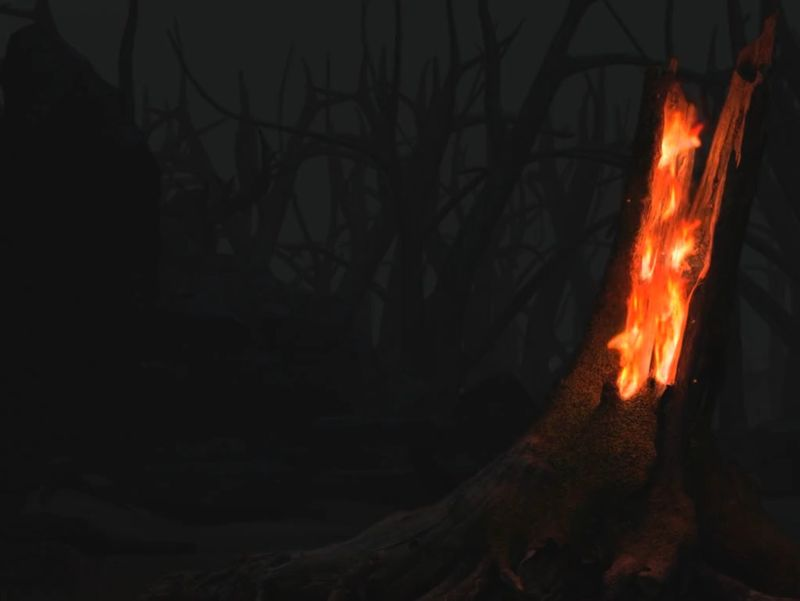 Burning Tree Trunk