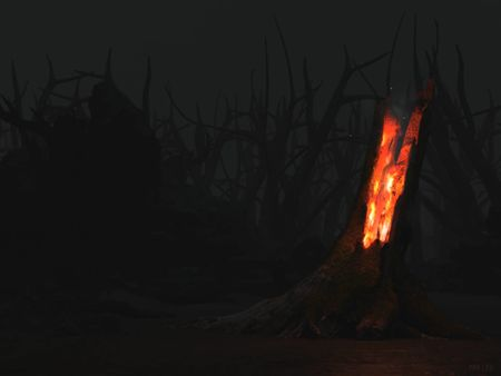 Burning Tree Trunk