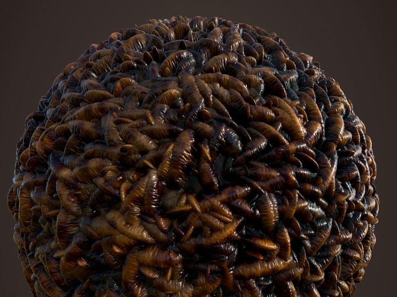 Maggots Material - Substance Designer