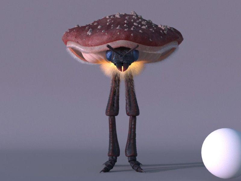 Insect Mushroom