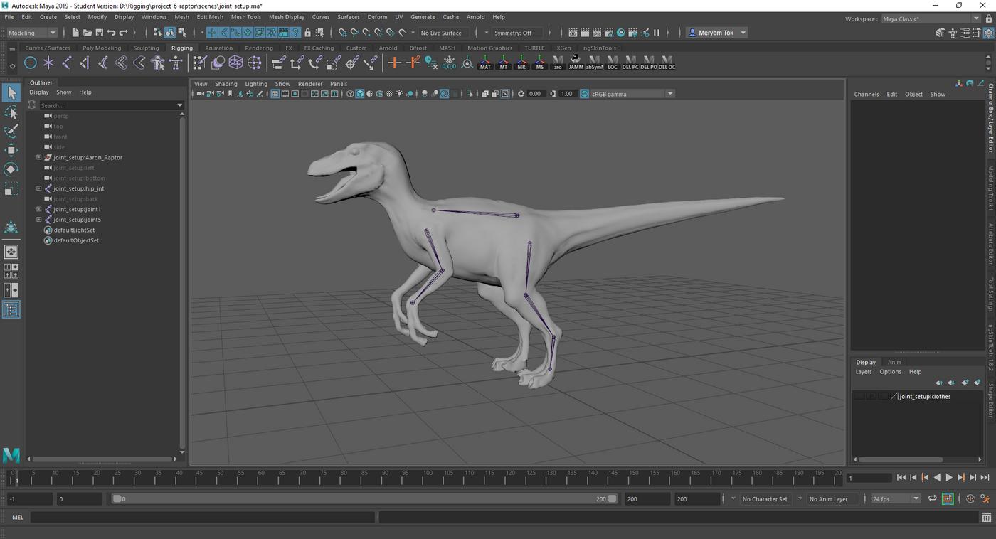 Raptor Skeleton Start Merytok