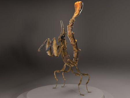 Thiago the Dragon Mantis Explorer
