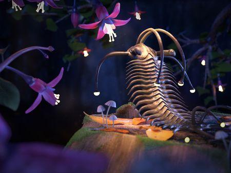 The trilobite