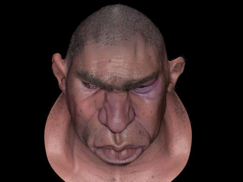Stylized Character head