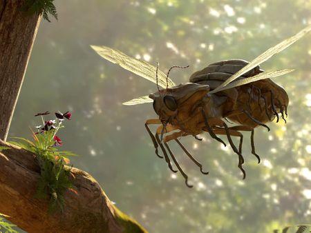 BeetleFly