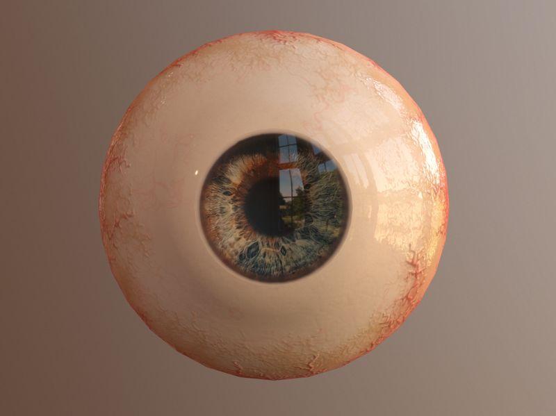 Weekly Drill 14 - Human Eye
