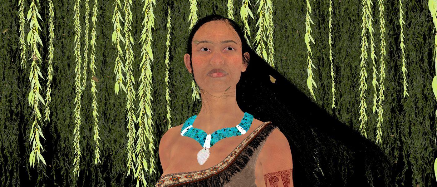 Pocahontas Sss Albedo 01 Nim