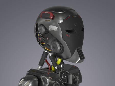 ANAN the Robot