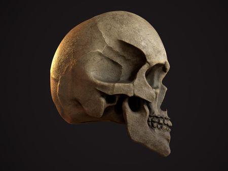 Weekly Drill 037 - Skull