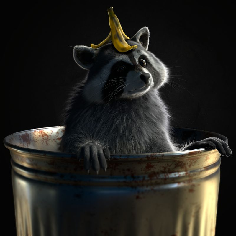 There is the racoon in my trash!