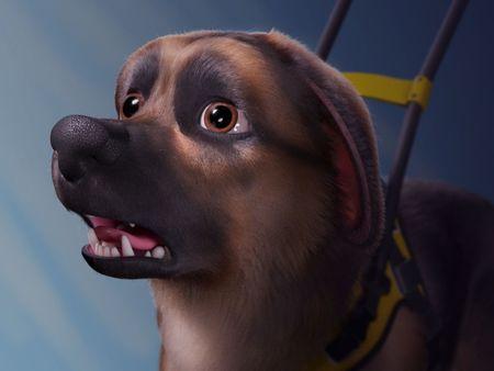 Eugene the guide dog