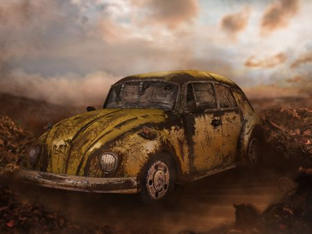 A Worn Out Beetle