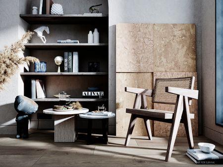 Pierre Jeanneret Chair