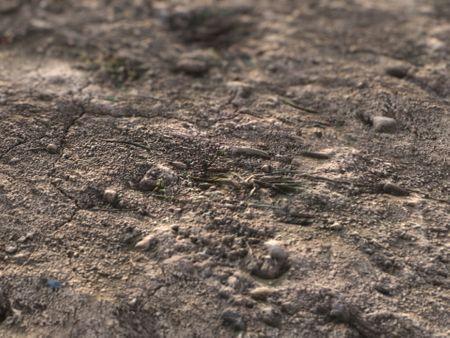 Soil Ground - PBR Material