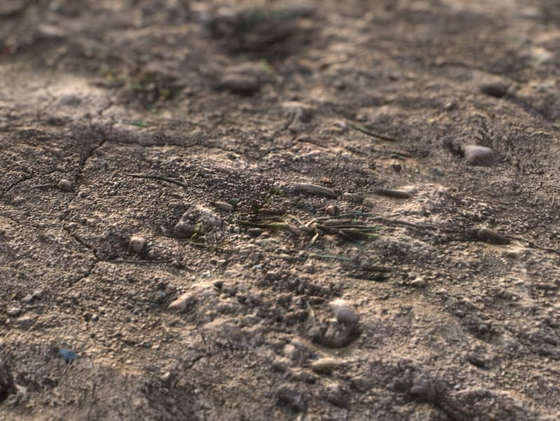 Soil Ground - PBR Material