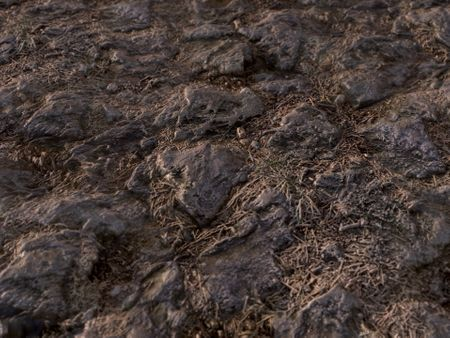 Stone Ground - PBR Material