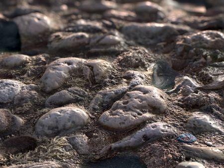 Stone Beach - PBR Material