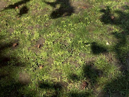 Grass - PBR Material