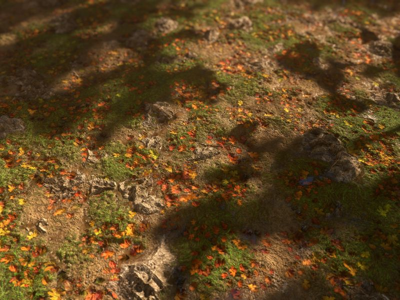 Forest Ground - PBR Material