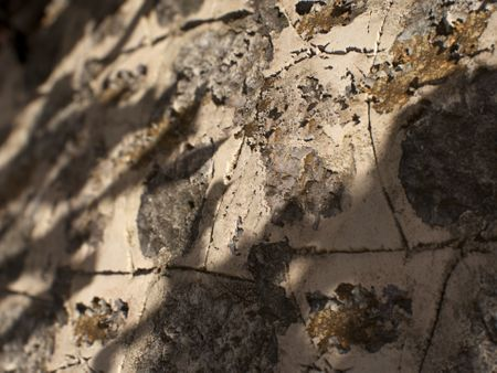 Stone Wall - PBR Material