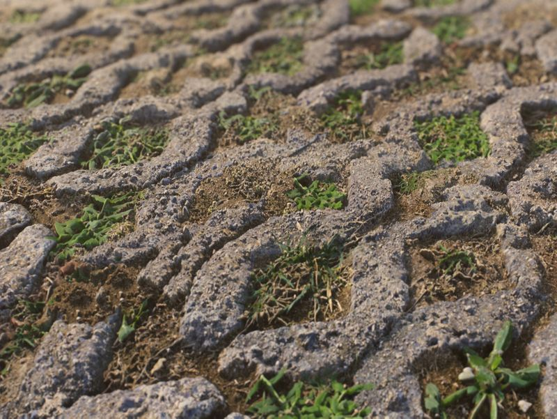 Stone/Grass Ground - PBR Material
