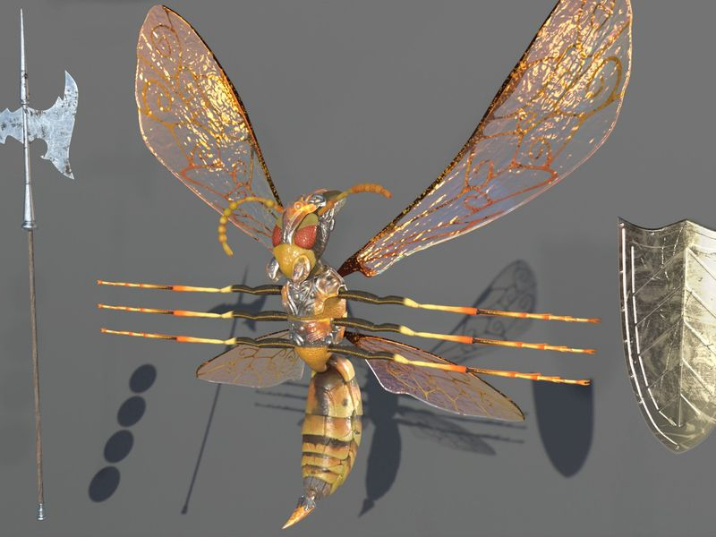 Project : Anthropomorphic insect