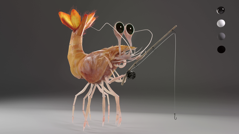 Fishing Shrimp