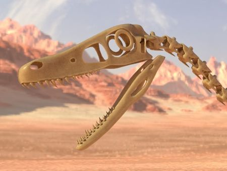 Velociraptor Skeleton