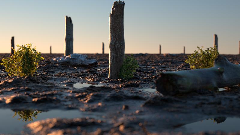 Realistic Mud Landscape