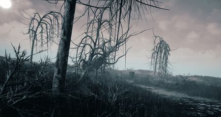 Abandonment Land
