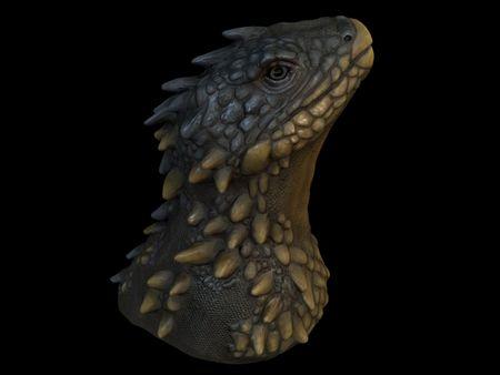 Lizard bust