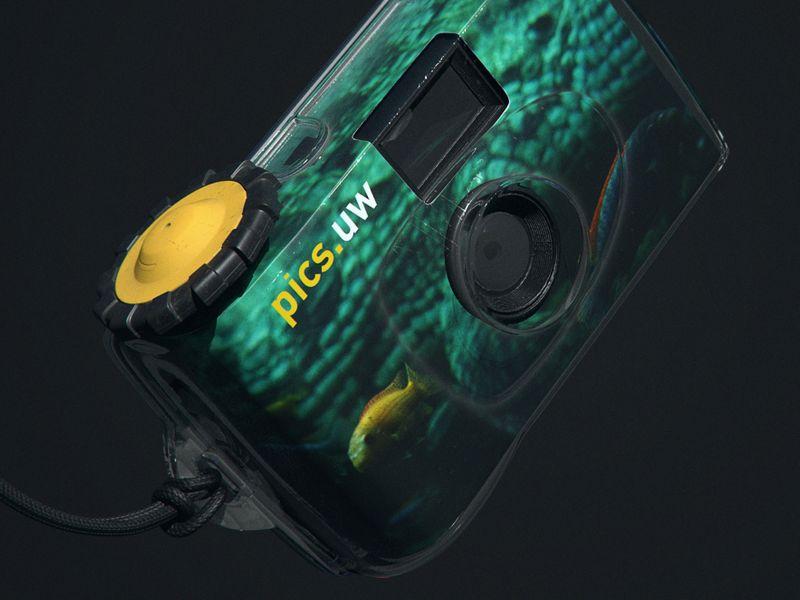 Weekly Drill - Camera