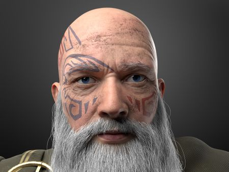 Druid old man