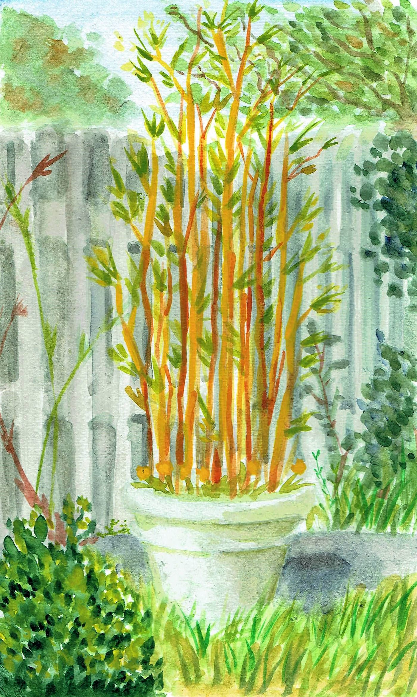 Watercolour 1 Salomebusurashvili