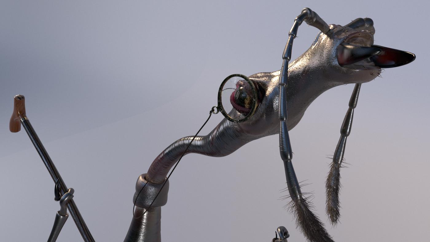 The Cranky Beetle !