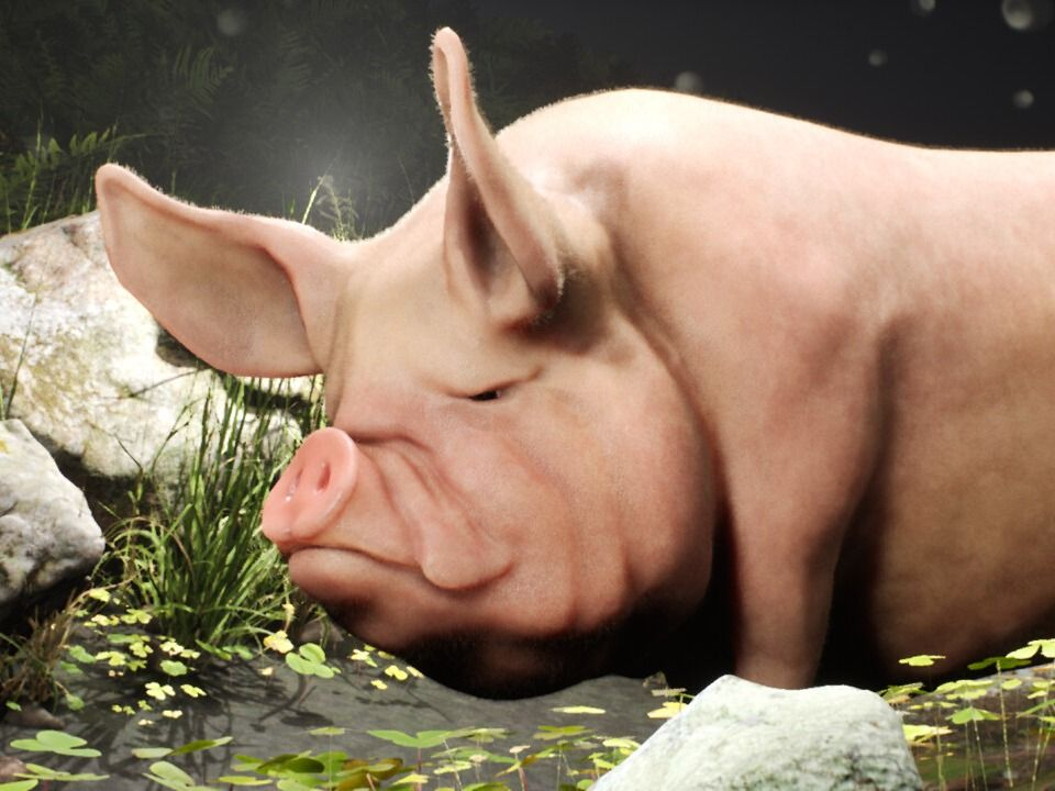 Real-Time Realistic Pig Model