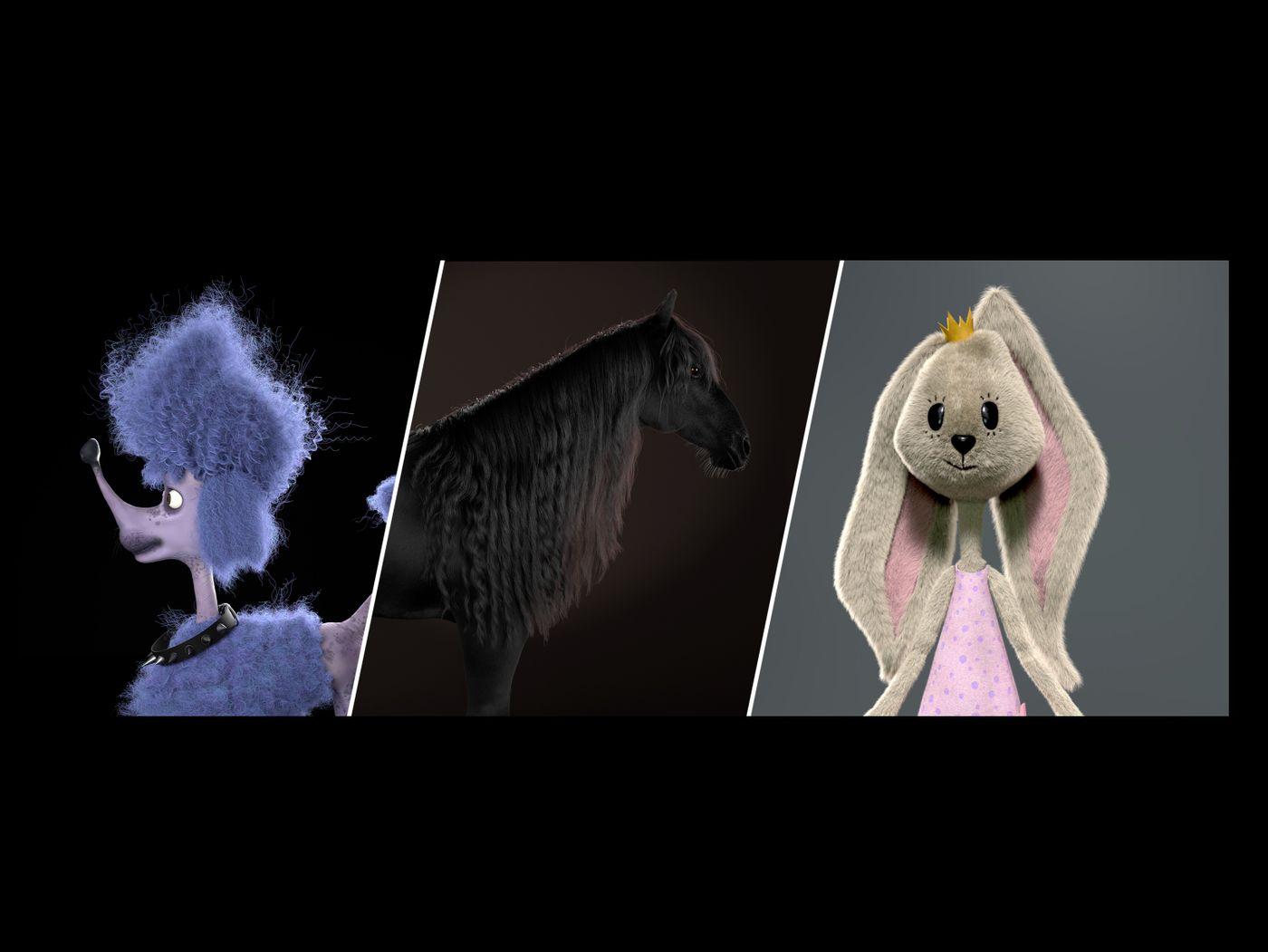 Groom and character reel - Solene Gaudu