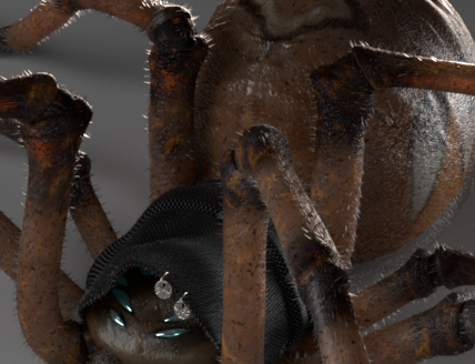 Gipsy Spider