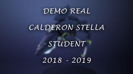 Demo Real Calderon Stella 3D 2019