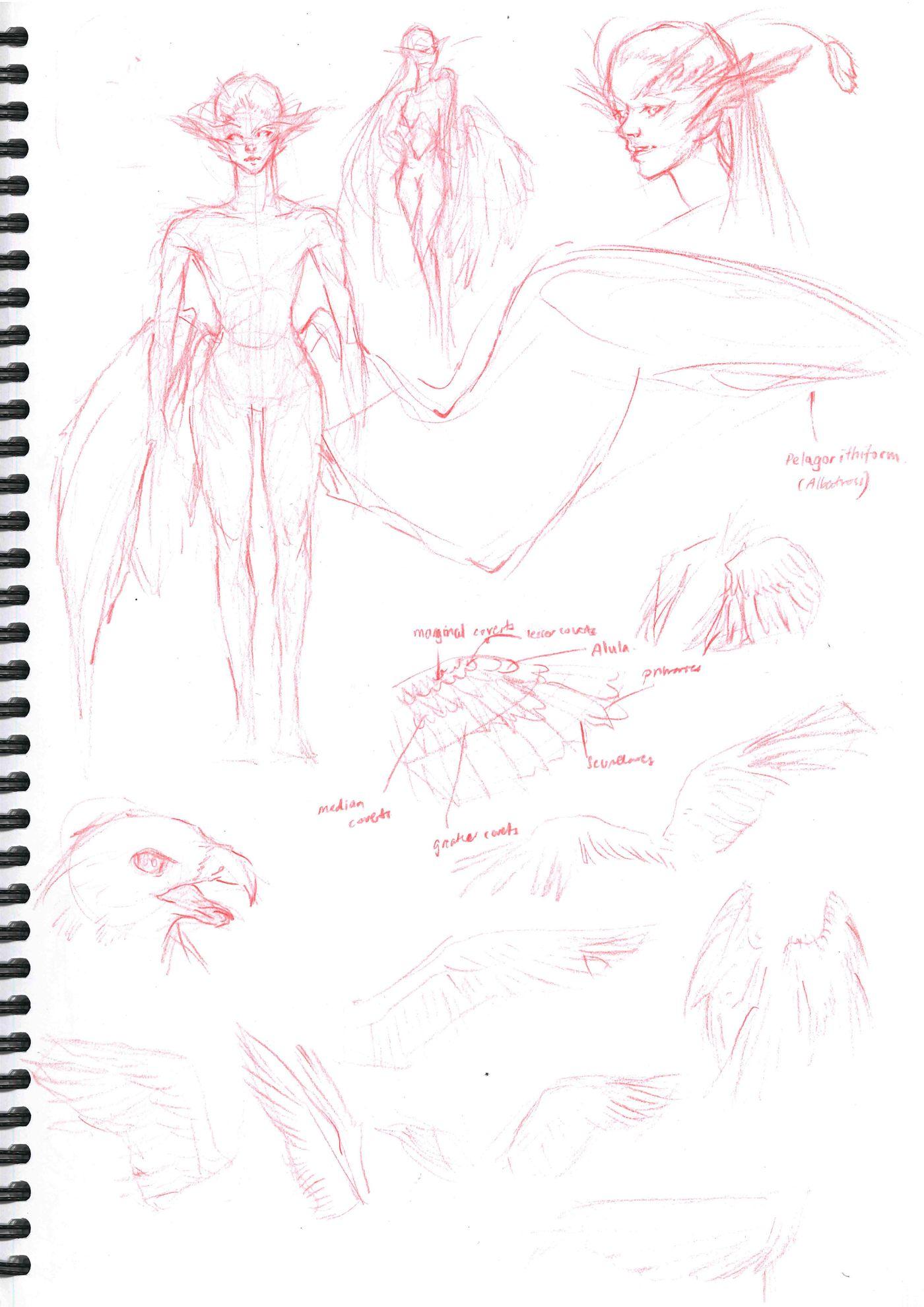 Sketchbook Page 10 Stephennjoto