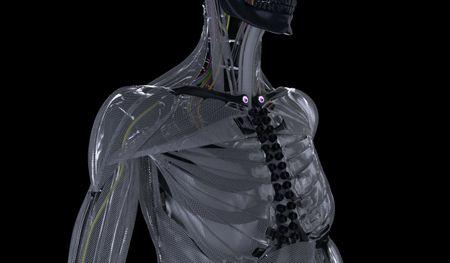 Robotic Humanoid