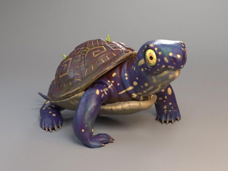 Turtle !