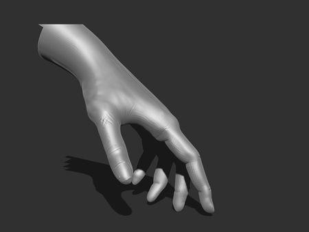 IMS 215 Anatomy Study, Hand