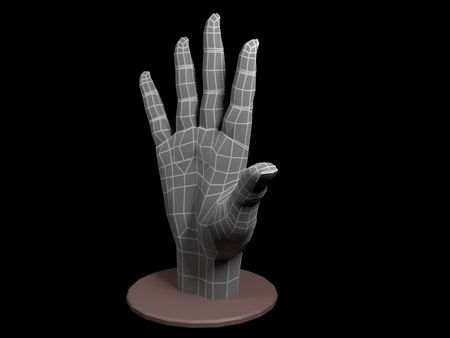 Hand modelling exercise