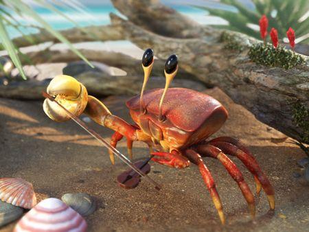 Violinist crab