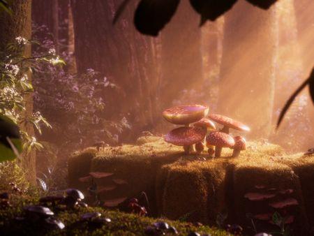 Mushroom Glade