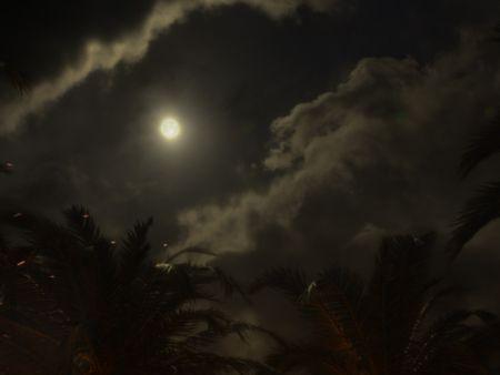 Caribbean Moonlight