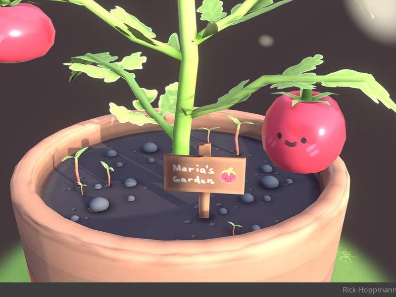 Cute Tomato Plant