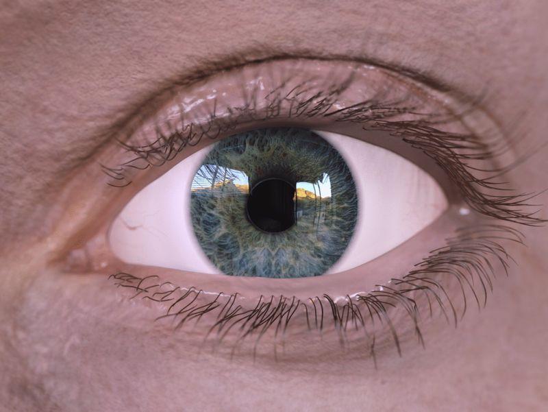 #WeeklyDrills 014 - Human Eye