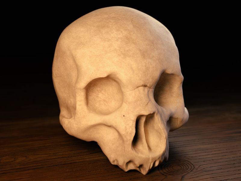 #WeeklyDrills 025 - Human Skull
